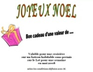 Example of a gift voucher offered at Christmas to discover the fluvial tourism